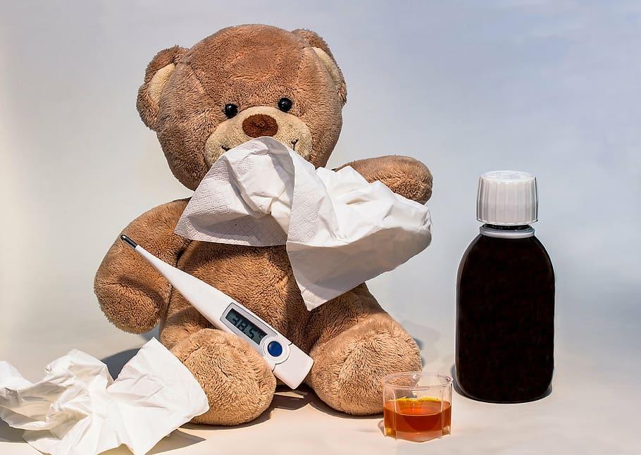 Fever dream bear