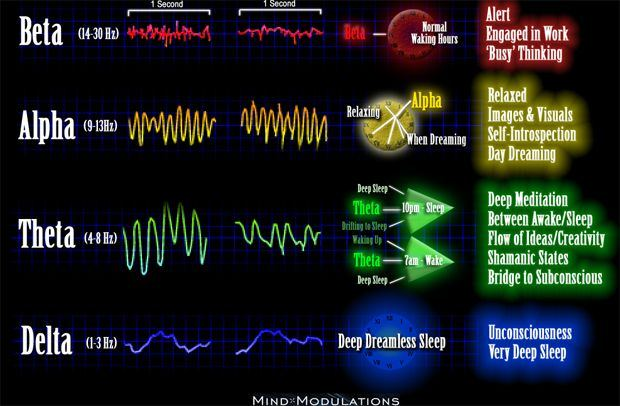 different kind of brainwaves