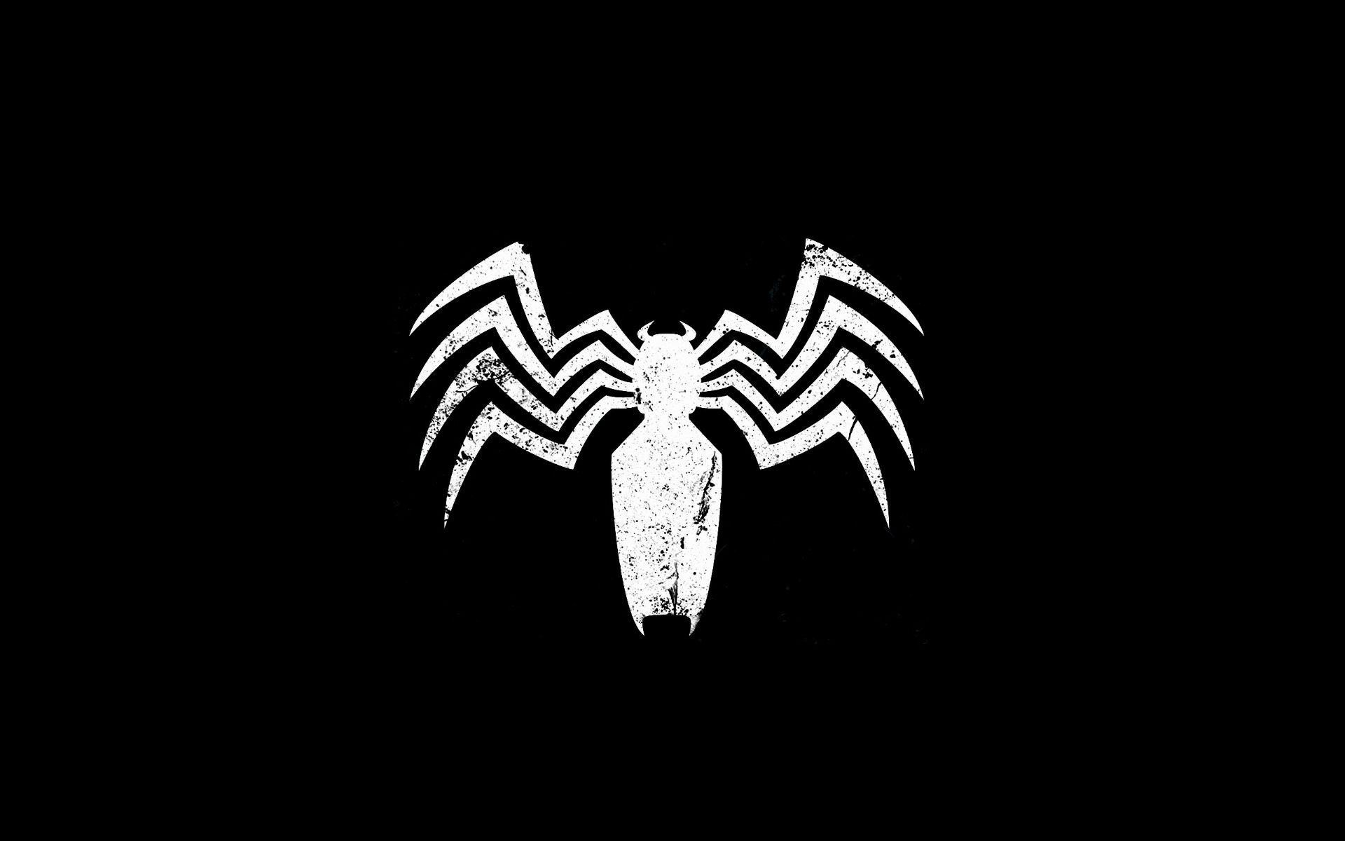 Spider of a dream