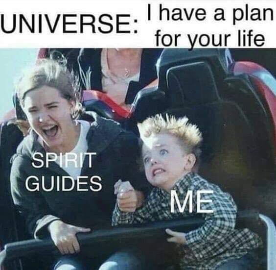 dream guide lucid dream meme